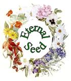 Eternal_Seed_140