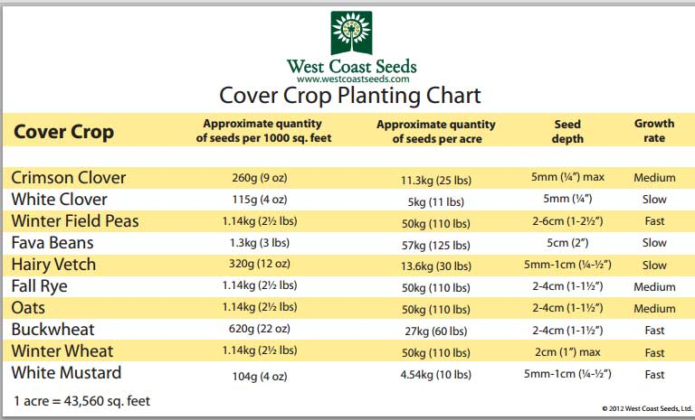 from West Coast seeds- see their list of cover crops here: http://www.westcoastseeds.com/product/Vegetable-Seeds/Cover-Crops/